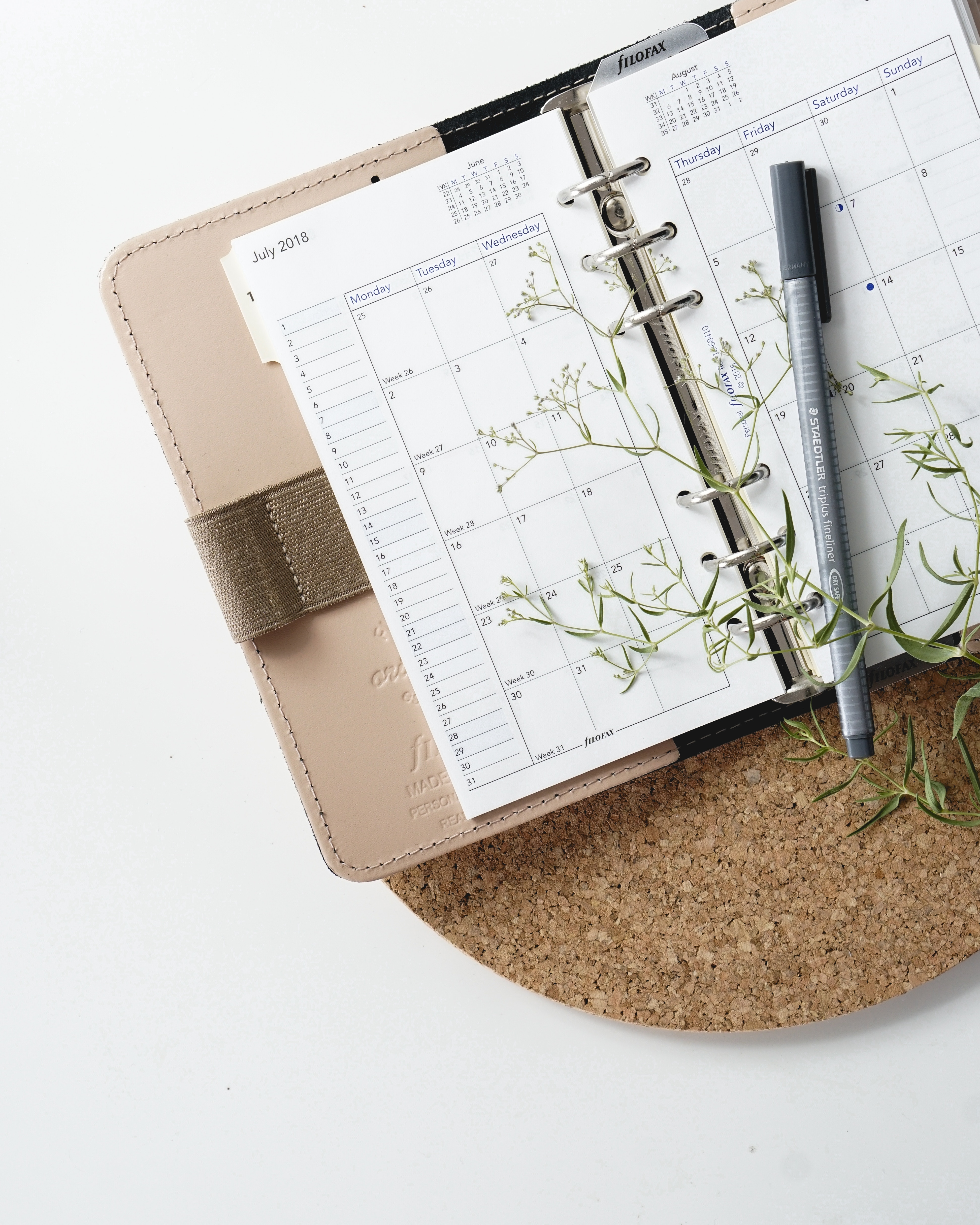 Open diary with pen