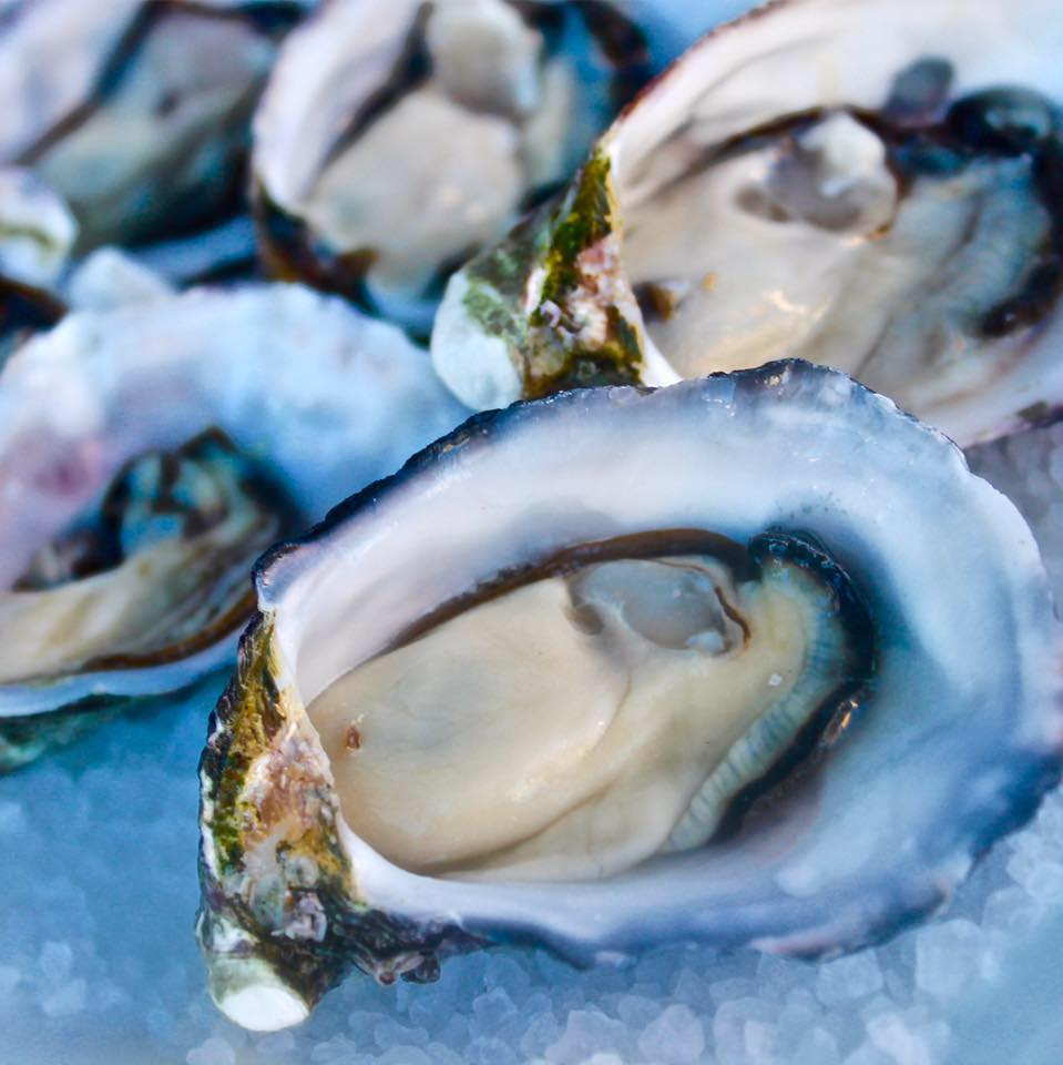 Yum...oysters! (Image: Riverside Seafood Cafe)