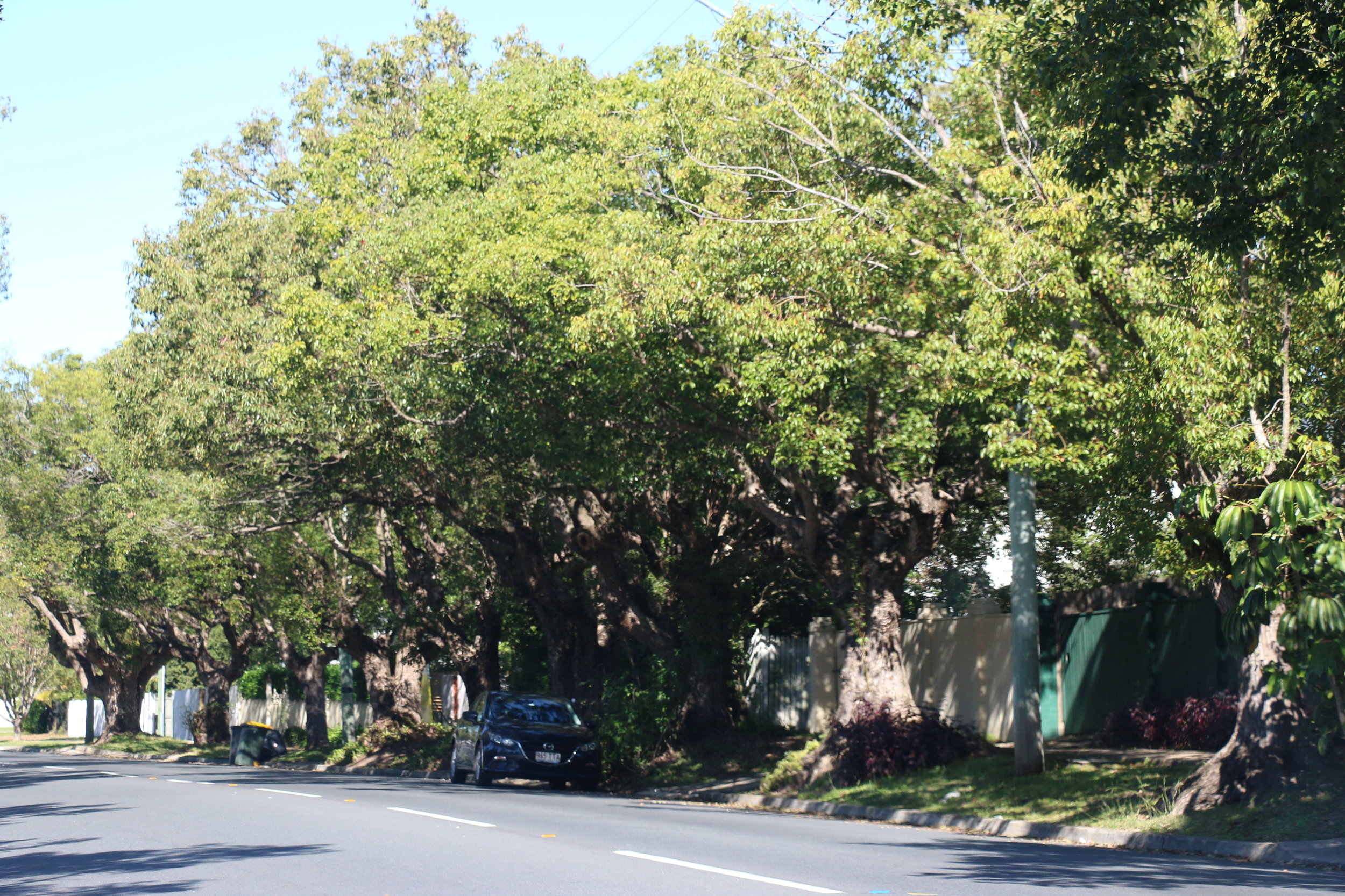 Oxley-Chelmer History Group | How Local Streets Got Their